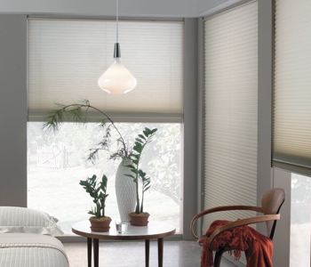 cellular shades in San Diego home