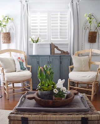 White shutters in bright sunroom.